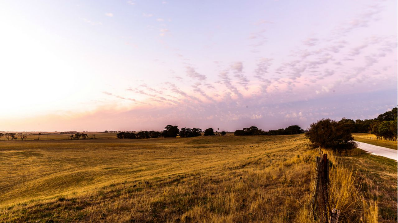 How to Buy Land For Sale in CHCH